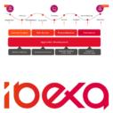 DXP (Digital Experience Platform) zur Unterstützung der digitalen Transformation bei B2B-Unternehmen